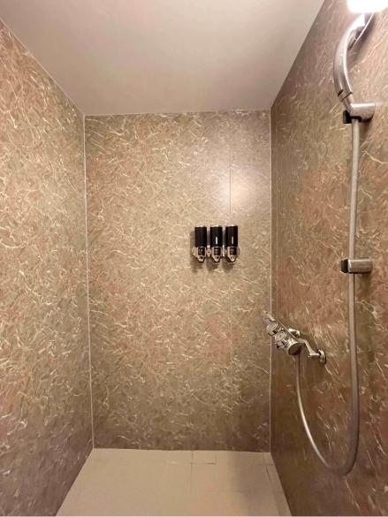 田草月205号室、シャワー室の写真1