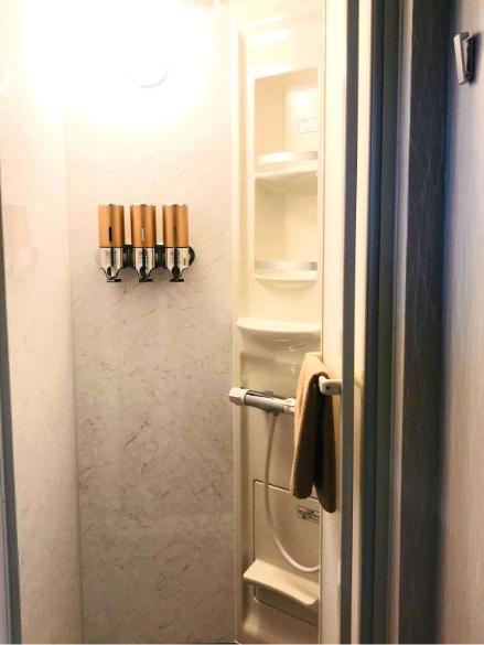 寝長月303号室、シャワー室の写真1